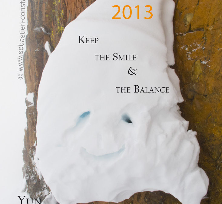 Voeux 2013 – Greeting 2013
